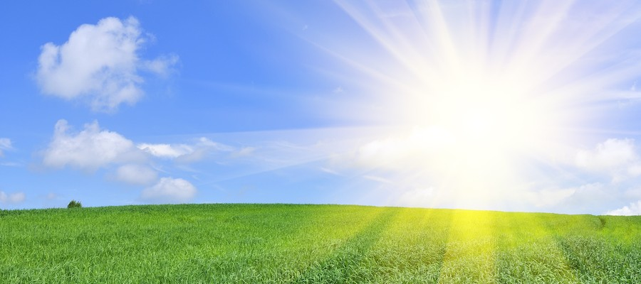Sun Shining In Blue Sky Over Green Field